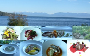 Sooke Harbour House was truly a culinary adventure with all my senses heightened. Our window view and meal made with all local ingredients, including the flowers from the garden. Far right the otters even came out to play while we enjoyed our chocolate pyramid